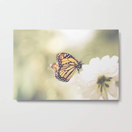 Love of a butterfly Metal Print