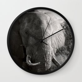 South African Elephant Wall Clock