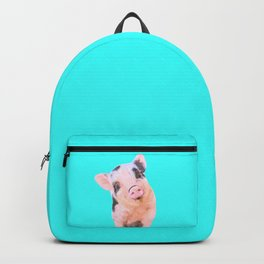 Baby Pig Turquoise Background Backpack