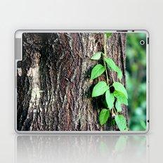 Wrinkles in Nature Laptop & iPad Skin
