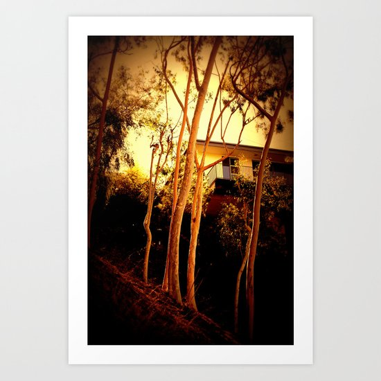 sunset mystery Art Print