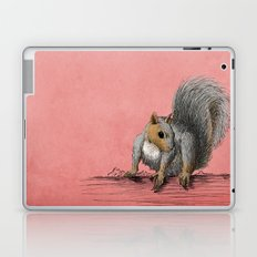 Squirrel Laptop & iPad Skin