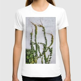 Upward Climbing (green vine on grey wall) T-shirt