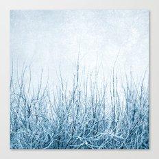 winter II Canvas Print