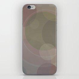 Circles Slate and Agate iPhone Skin