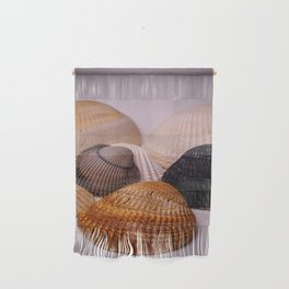 Different color shell Wall Hanging