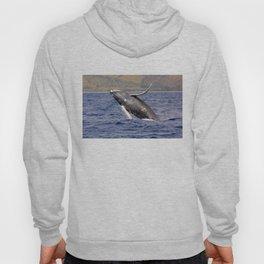 Humpback Whale Splashing Hoody