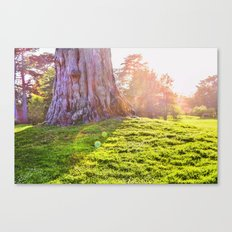 Sunshine Makes Me Happy Canvas Print