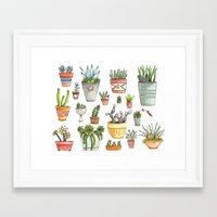 succulents Framed Art Prints featuring Potted Succulents by Brooke Weeber