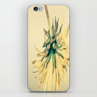 weed iPhone & iPod Skins featuring Weed by Dora Birgis