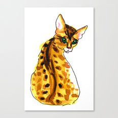 bengal kitten Canvas Print