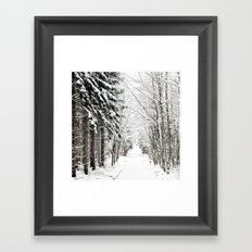 canopy of snowy branches Framed Art Print
