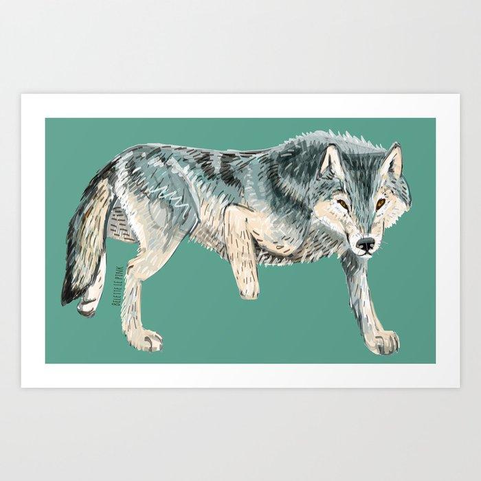 Canis lupus albus (c) 2017 Art Print