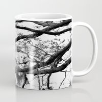 spanish Mugs featuring Spanish Moss by MorganLoriPhoto