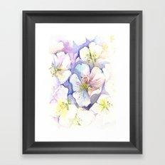 Cherry Blossoms Flowers Spring Floral Framed Art Print