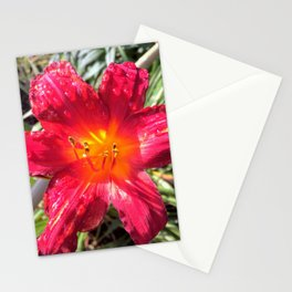 Dew on Crimson Stationery Cards