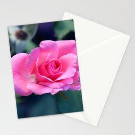 Soft Pink Rose Bloom Stationery Cards