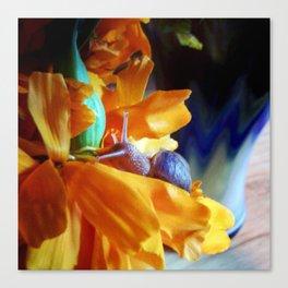 Flor de cempasúchil Canvas Print