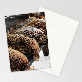Pheasants Stationery Cards
