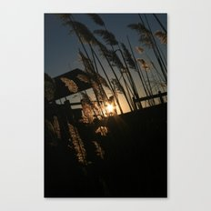 Sunset in the Fall Canvas Print