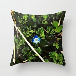 Persian Speedwell 2 Throw Pillow