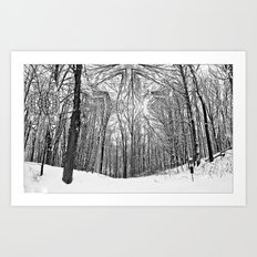 Witchy Forest Art Print