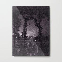 Wakarusa Metal Print