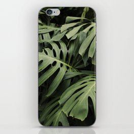 Botanical Dreams iPhone Skin