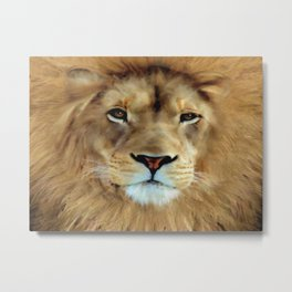 LION - Aslan Metal Print