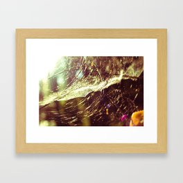 Cobweb Framed Art Print