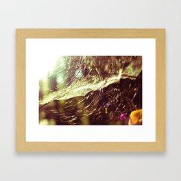 Cobweb Framed Art Print