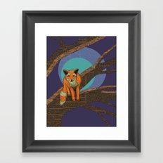 Fox at night Framed Art Print