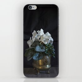 Flower: White Cyclamen iPhone Skin