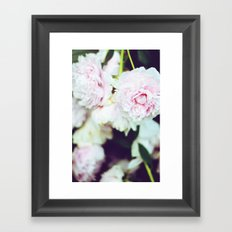 Peony Garden Splendor II Framed Art Print