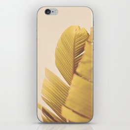 Palm Leaves iPhone Skin