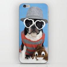 Little Shit Boston Terrier iPhone & iPod Skin
