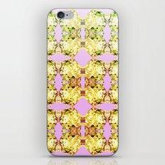 Pop Rocks iPhone & iPod Skin