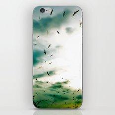 Descendants of Icarus iPhone & iPod Skin