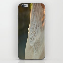 Sister There's Just No Fooling Me iPhone Skin