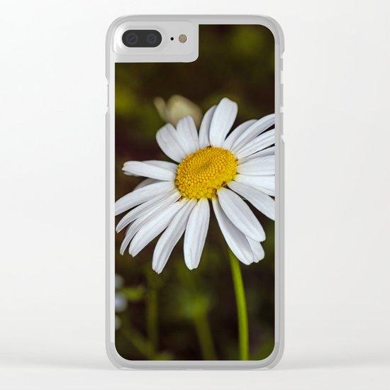 Daisy in the sun Clear iPhone Case