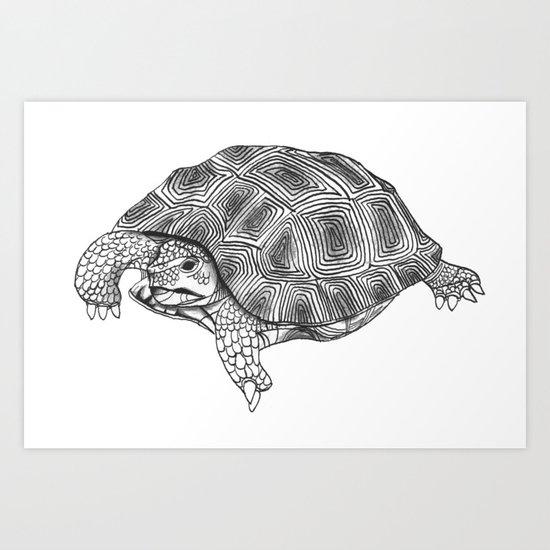 Little tortoise Art Print