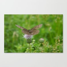 Takeoff Canvas Print