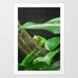 Vibrant Green Art Print