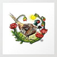 Pheasant - Colour Art Print
