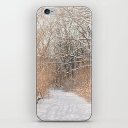 Snow Covered Trails iPhone Skin