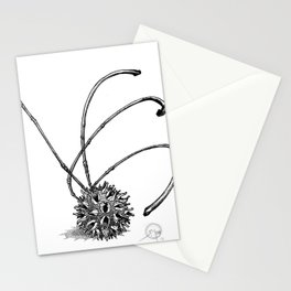 Gum Seed Stationery Cards