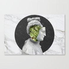 Araceae Venus Canvas Print