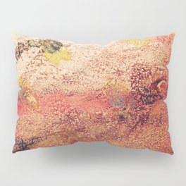 Abstract R5 Pillow Sham