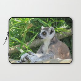 Cute and relaxed Ring-tailed lemur (lemur catta) Laptop Sleeve