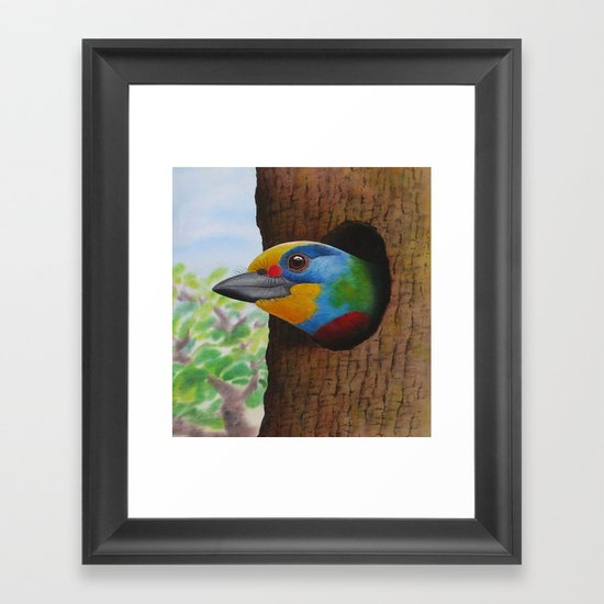 Beautiful Bird Framed Art Print